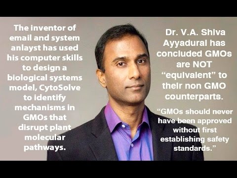 Dr. Ayyadurai : GMO Seeds NOT Same as Real Ones & Create Toxins