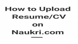apply job naukri com more than big