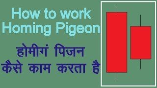 How to use Homing Pigeon Candlestick Pattern in Hindi. Technical Analysis in Hindi