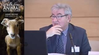 Thierry AUFFRET VAN DER KEMP | Quels animaux sont concernés par le bien-être dans le droit ?