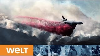 PROMI-FLÜCHTLINGE: Feuer vertreibt Hollywood-Stars aus ihren Villen