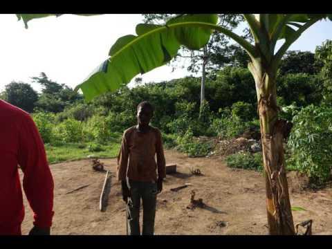 Slow Douala  instrumental