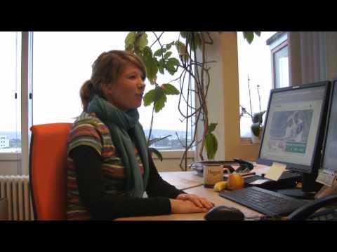 hessnatur - Die Verfügbarkeit von Artikeln im Onlineshop
