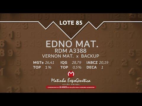 LOTE 85 MATINHA EXPOGENÉTICA 2021