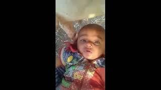 Download Video Sapi India Menyusui Bayi Manusia MP3 3GP MP4