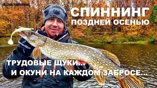 Ловля щуки и окуня поздней осенью. Супер приманка для окуня. Рыбалка на спиннинг 2017.