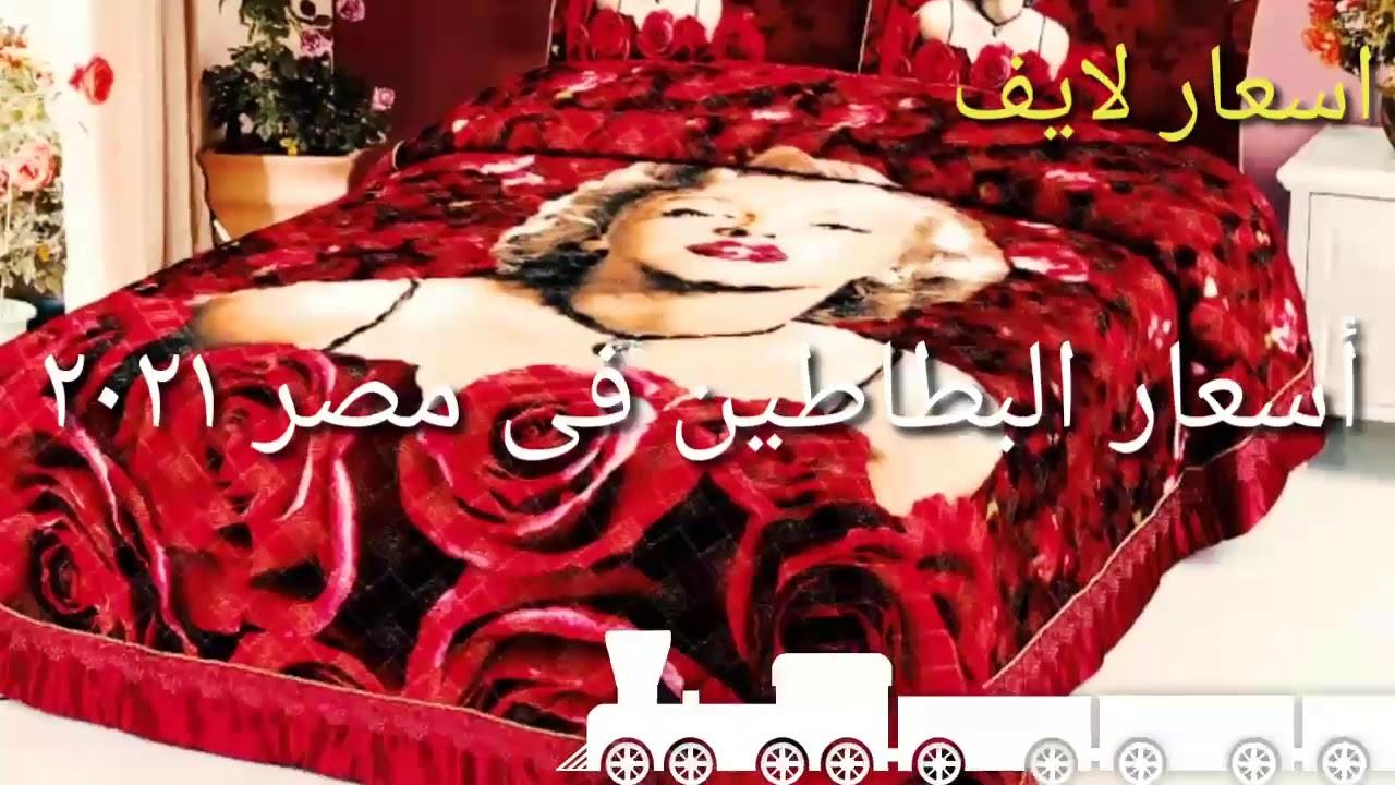اسعار البطاطين في مصر 2021 Youtube
