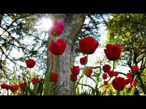 Tori Kelly-Always Love You (Lyrics) Happy Mothers Day