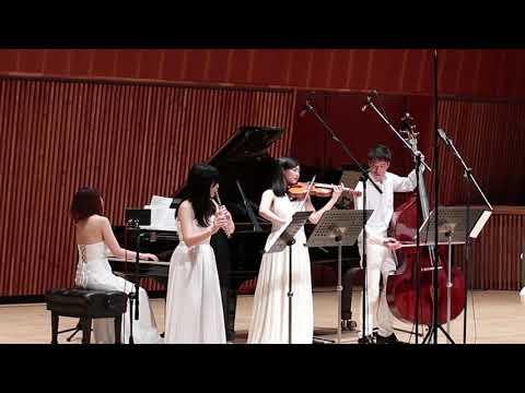 Dragon Ball Mystical Adventure - ドラゴンボール魔訶不思議アドベンチャー [Violin/Flute/Cello/Piano/Contrabass]