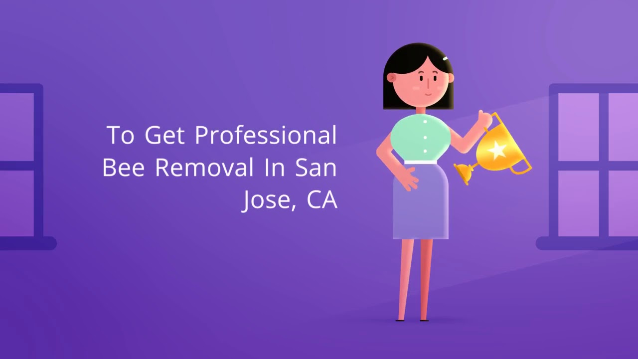 OCP Bed Bug Exterminator San Jose CA - Bee Removal