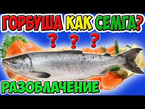 Проверка Рецепта Горбуша Соленая под Семгу. ТОП 5 Праздничных Рецептов