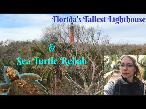 Ponce Inlet Florida, things to do in the Winter for Free or Cheap