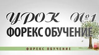 УРОК №1 Видео Обучение ФОРЕКС!!!