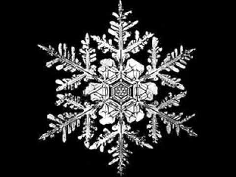 Black Snow - Padidinta doze  Black Snow