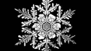 Black Snow - Padidinta doze