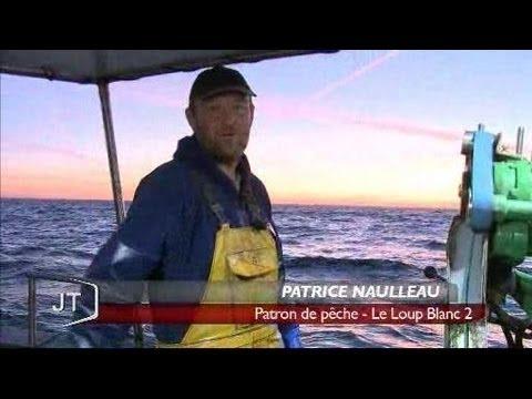 La pêche au bar de ligne (Saint-Gilles-Croix-de-Vie)