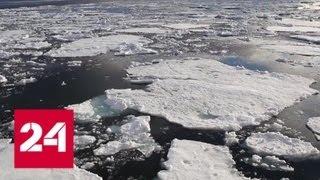 США намерены диктовать миру условия по Арктике - Россия 24