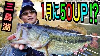 1月に50アップの怪獣出現⁉︎完敗です #バス釣り #三島湖 #50アップ #釣り方
