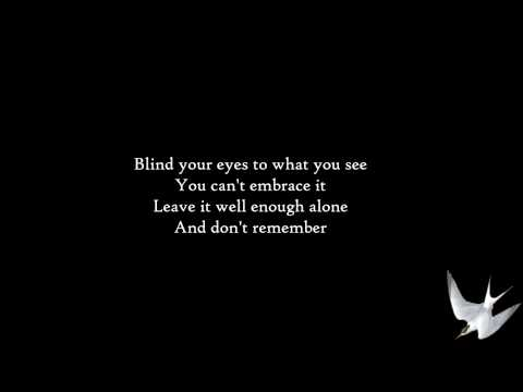 Disturbed  Remember Lyrics HD