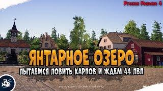 Ловля Карпов на Янтарном озере Driler Русская Рыбалка 4