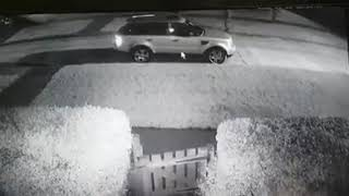 Naked man chases after thief when he tries to steal his car