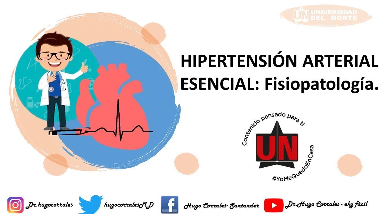 Fisiopatología de la hipertensión arterial. Profesor Hugo..