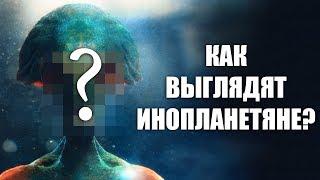 КАК ВЫГЛЯДЯТ ИНОПЛАНЕТЯНЕ? | Реальная Фантастика