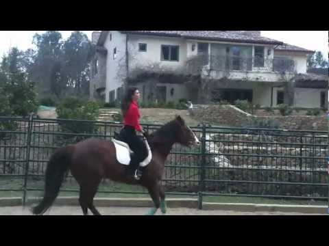 Danielle Vasinova Horseback Riding English