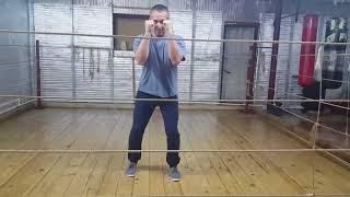 Профи бокс.  Урок 1, движения.