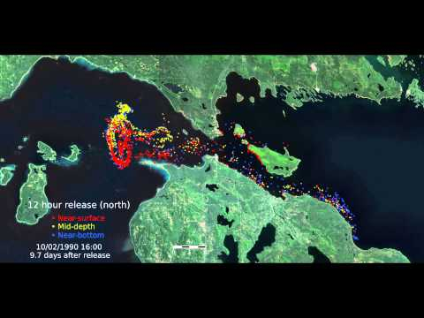 Straits of Mackinac Contaminant Release Scenario: 12-Hour Release in Sept. on North Side of Straits