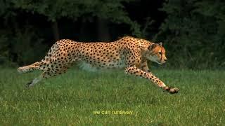 Jaydon Lewis - Runaway (feat. ChianoSky)