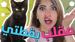 مقلب بقطتي! | PRANKED MY CAT