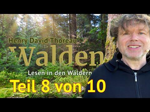 Henry David Thoreau: Walden – Teil 8 von 10 – Das Lesen in den Wäldern