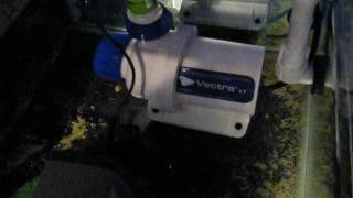 Ecotech Marine Vectra L1 pump whining noise