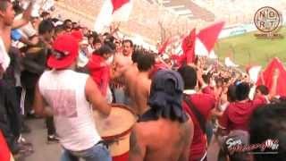 UNIVERSITARIO vs J.Galvez 2013 - TRINCHERA NORTE - Fiesta TribUnera 1