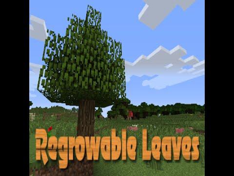 leaf decay minecraft