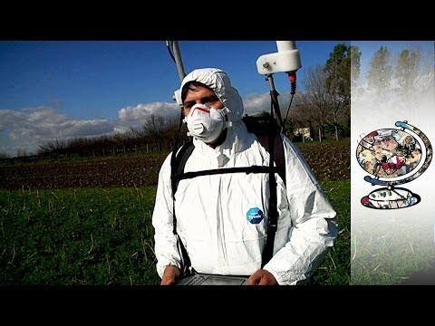 Inside Italy's Secret Toxic Waste Crisis