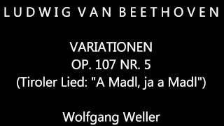 Beethoven, Variationen op. 107 Nr. 5, Wolfgang Weller 2013.