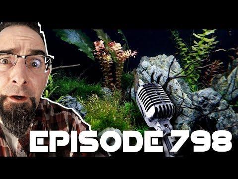 Crystal Shrimp, Tank Racks, Plant Questions! Episode 798!