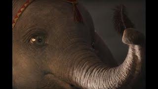 """""""Dumbo"""" : découvrez le clip de """"Baby Mine"""" par Arcade Fire"""
