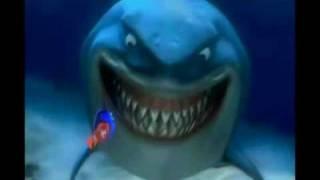 AFG doppiaggio - Finding Nemo - scena: incontro con lo squalo Bruto, è una prova