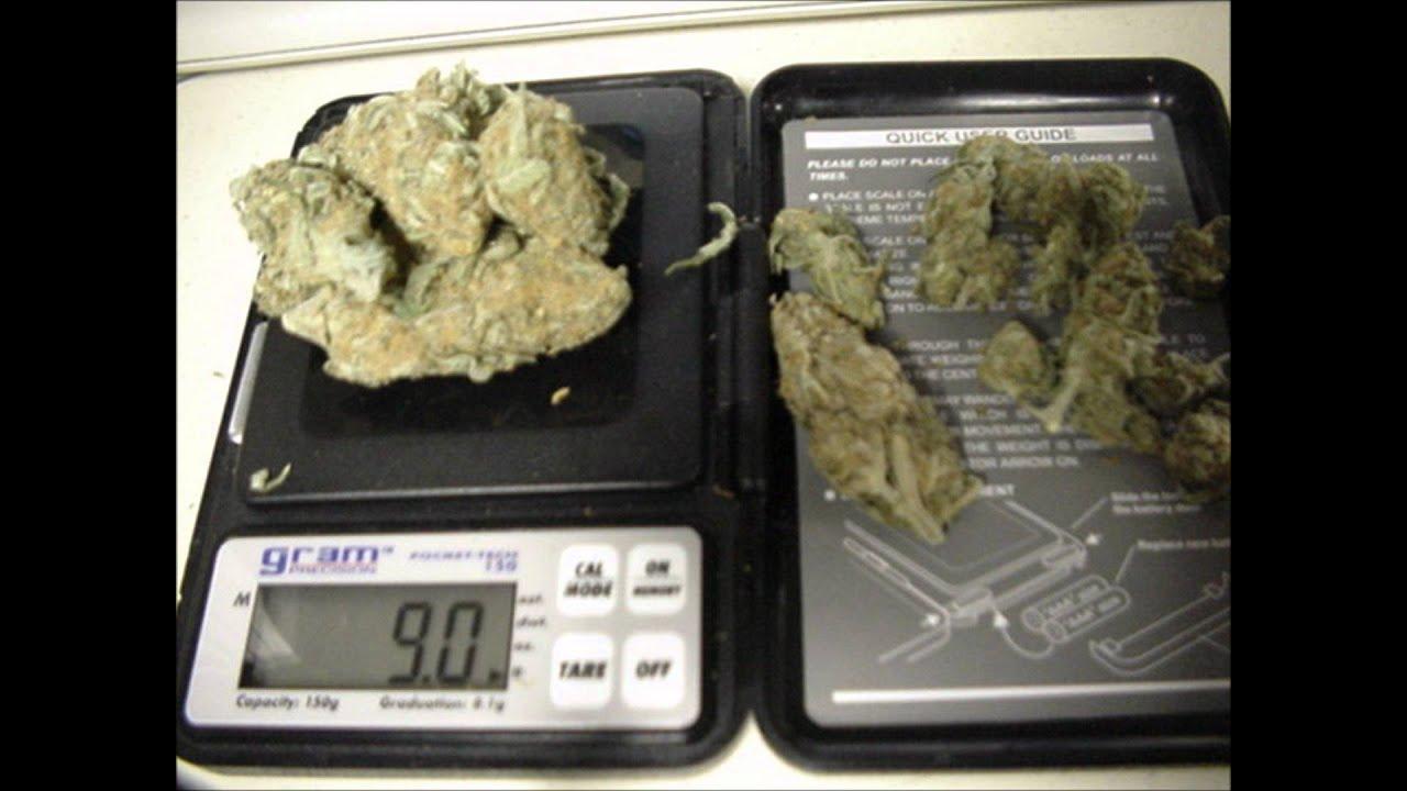 Сколько 10 грамм марихуаны как заваривать семена конопли