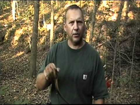 Traditional Archery Basics Part 3 - Bow Accessories