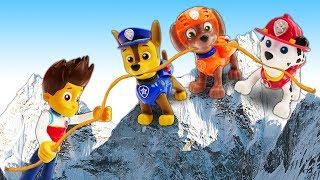 Видео про игрушки из мультфильма Щенячий Патруль!  Райдер знакомится с животными!