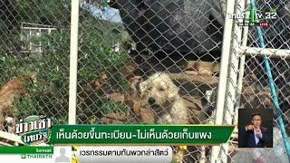 ครม.ถอนขึ้นทะเบียนหมา-แมวศึกษาใหม่ | 12-10-61 | ข่าวเช้าไทยรัฐ