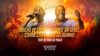 Salgadinho e Netinho de Paula - Brilho de Cristal / Gente da Gente / Cohab City / Beijo Geladinho