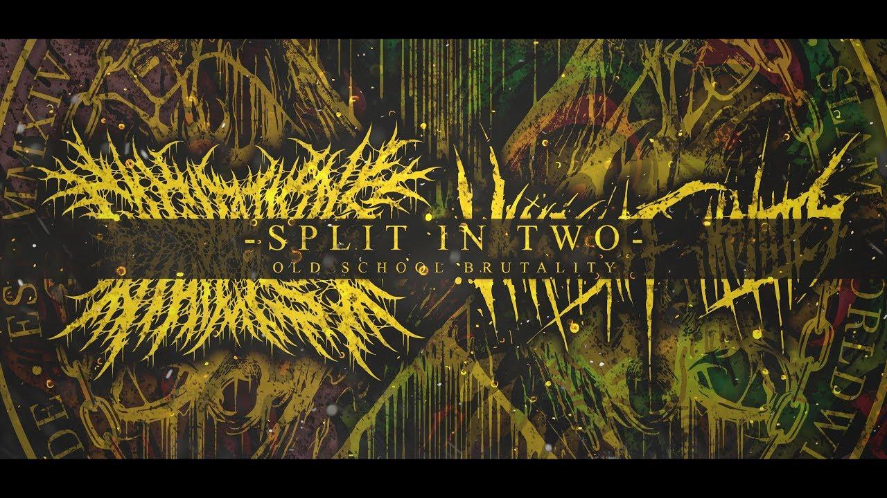 split 2019 stream