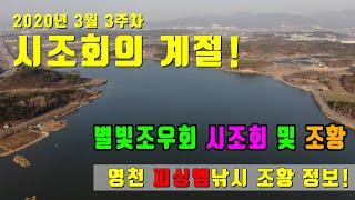 2020년 3월 3주차 영천권 조황