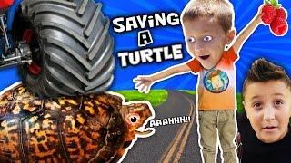WE SAVED AN INJURED TURTLE!! (FUNnel Vision Pet Smart Habitat Vlog)