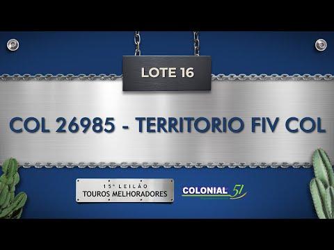LOTE 16   COL 26985
